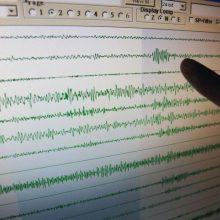 Indonezijai smogė 7,3 balo stiprumo žemės drebėjimas