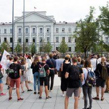 """Pikete Vilniuje policija raginta """"baigti meluoti"""""""