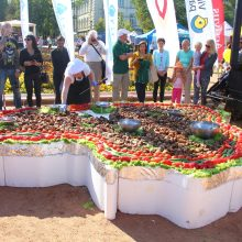 Naujas Lietuvos rekordas: iškeptas ilgiausias vištienos šašlykas