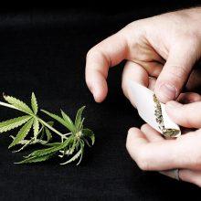 Už nedidelio kiekio narkotikų turėjimą – tik bauda, kalėjimas nebegrės?