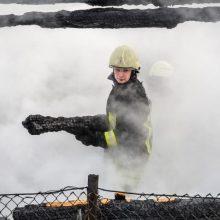 Kaišiadoryse ugnis siaubė ūkinius pastatus
