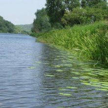 Lėvens upei ties Pasvaliu ketinama įpūsti gyvybės