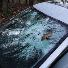 """Kalvarijų rajone """"Audi"""" skriejo nuo kelio ir rėžėsi į medį: vairuotojas žuvo"""