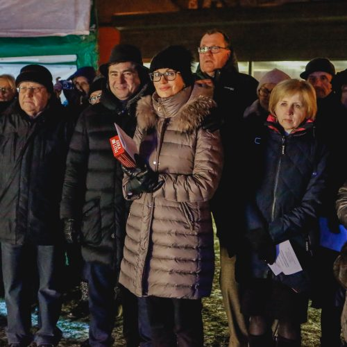 Šventinis koncertas   © Vytauto Petriko nuotr.