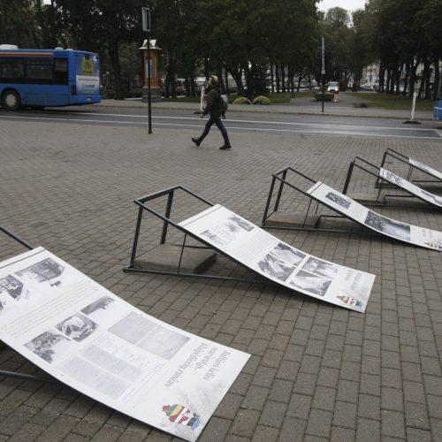 Stiprus vėjas Klaipėdoje  © Vytauto Liaudanskio nuotr.