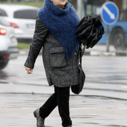 Lapkričio 7-oji Klaipėdos diena  © Vytauto Liaudanskio nuotr.