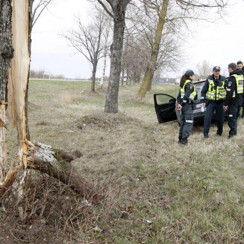 Pakeliui iš Klaipėdos į Palangą automobilis rėžėsi į medį  © Vytauto Liaudanskio nuotr.