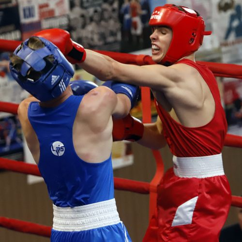Viliaus Buikos tarptautinis bokso turnyras