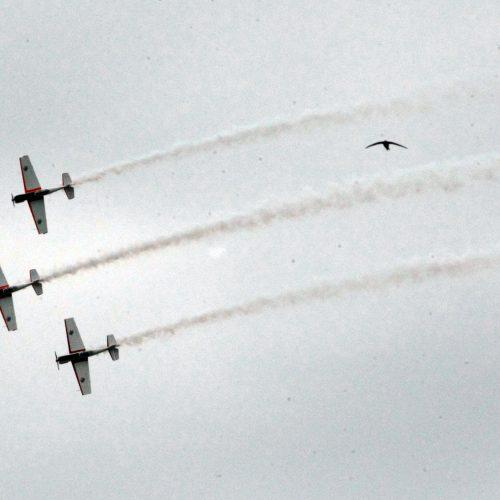 ANBO akrobatinis skrydis Kaunui  © Laimučio Brundzos nuotr.