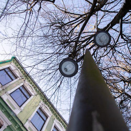 Besikeičianti Laisvės alėja  © Justinos Lasauskaitės nuotr.