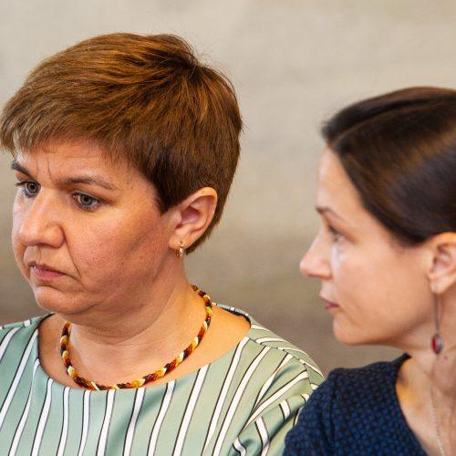 Spaudos konferencija dėl Gedimino kalno  © P. Peleckio / Fotobanko nuotr.