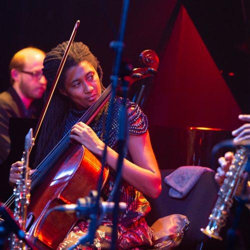 """Festivalio """"Vilnius Jazz"""" akimirkos  © G. Skaraitienės / Fotobanko nuotr."""