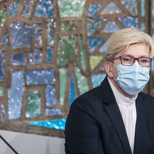Partijų spaudos konferencijos po Seimo rinkimų  © P. Peleckio / Fotobanko nuotr.