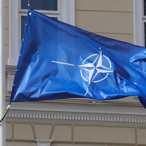 Minimos Lietuvos narystės NATO 17-osios metinės  © D. Labučio / ELTOS nuotr.