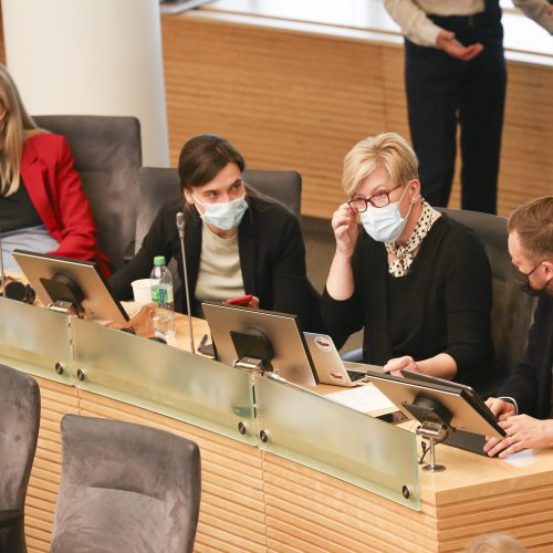 Seime – Partnerystės įstatymo projekto pateikimas  © M. Morkevičiaus / ELTOS nuotr.