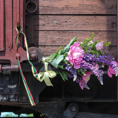 Gedulo ir vilties dienos minėjimo renginiai  © M. Morkevičiaus, D. Labučio / ELTOS, P. Peleckio / Fotobanko nuotr.