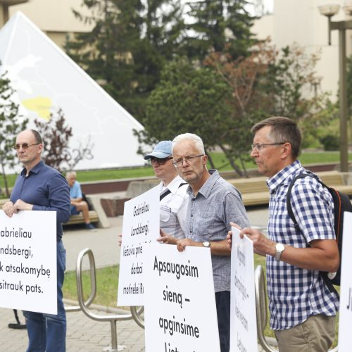 Protestas prie Seimo: reikalauja užkirsti kelią į Lietuvą migrantams  © I. Gelūno / Fotobanko, M. Morkevičiaus / ELTOS ir V. Sinicos nuotr.