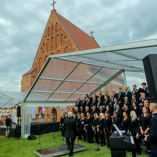 Valstybės dienos paminėjimas Zapyškyje  © Evaldo Šemioto nuotr.