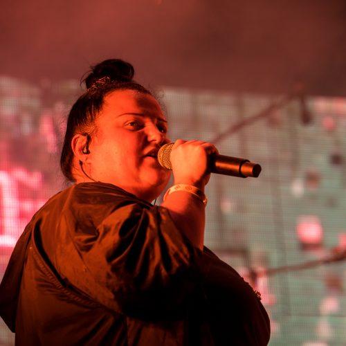 """""""Loftas fest"""" festivalis  © G. Kaškelio nuotr."""