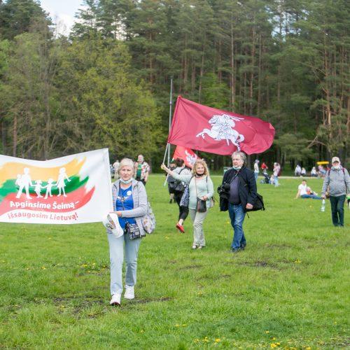 """Vingio parke renkasi """"Didžiojo šeimos gynimo maršo"""" dalyviai  © Vilmanto Raupelio nuotr."""