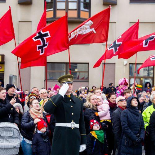 Šventinis trijų Baltijos valstybių pakėlimo ceremonija ir trispalvės nešimas   © Irmanto Gelūno / Fotobanko nuotr.