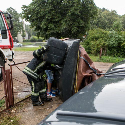 Bevaisė į konteinerį išmesto šunelio gelbėjimo operacija  © Vilmanto Raupelio nuotr.