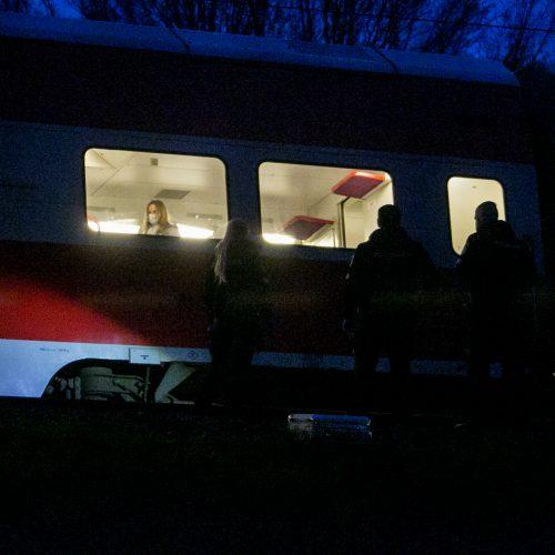 Petrašiūnuose po traukinio ratais žuvo jauna moteris  © Vilmanto Raupelio nuotr.