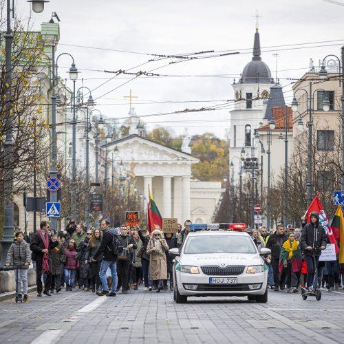 A. Astrauskaitės mitingas prieš pandemijos valdymą Vilniuje