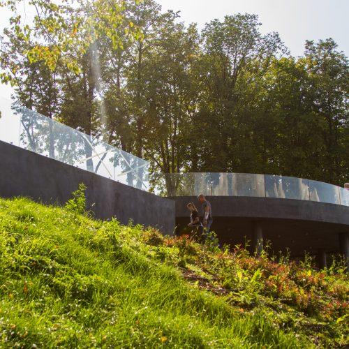 Tvarkomoje Aleksoto apžvalgos aikštelėje – brokas  © Laimio Steponavičiaus nuotr.