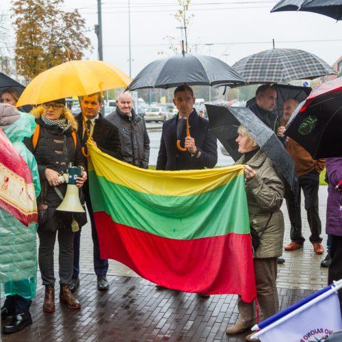 Piketas prieš planus dalį Kauno rajono teritorijos prijungti prie miesto