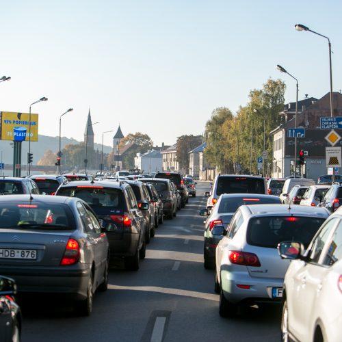 Policijos reidas judrioje Kauno gatvėje  © Vilmanto Raupelio nuotr.