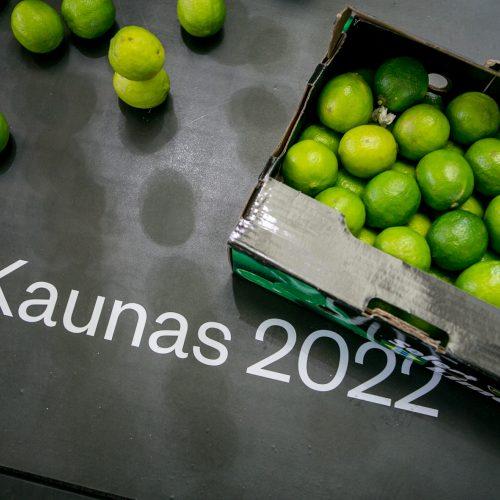 2019-ųjų Laimės diena Kaune  © Vilmanto Raupelio, Laimio Steponavičiaus nuotr.