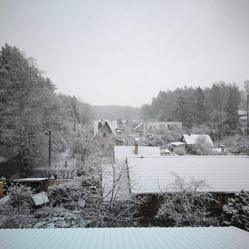 Pirmojo sniego vaizdai Lietuvoje