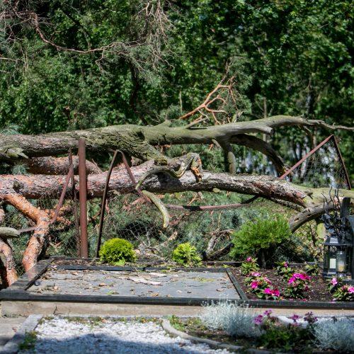 Nelaimė Žemųjų Kaniukų kapinėse  © Vilmanto Raupelio nuotr.