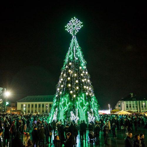 Marijampolėje sušvito Kalėdų eglė  © Marijampolės savivaldybės nuotr.