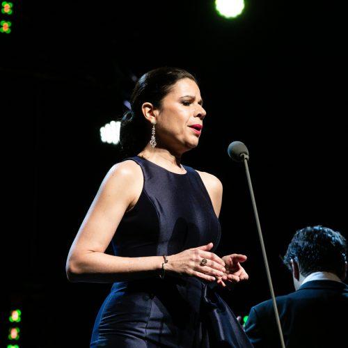 Operos karaliaus Placido Domingo koncertas Kaune  © Teodoro Biliūno/Fotobanko nuotr.