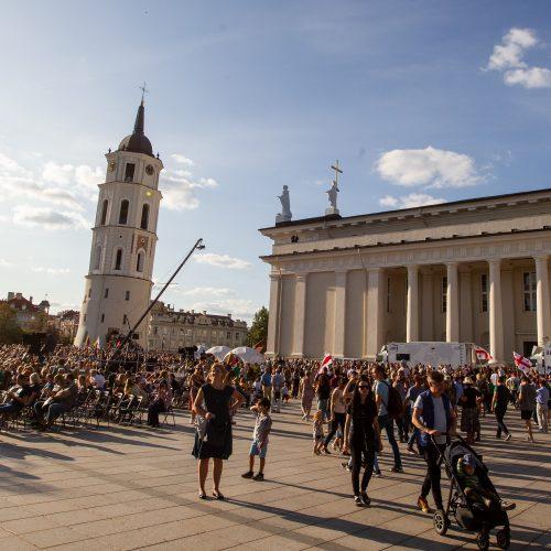Baltijos kelio 30-čio minėjimas sostinės Katedros aikštėje  © P.Peleckio/Fotobanko nuotr.