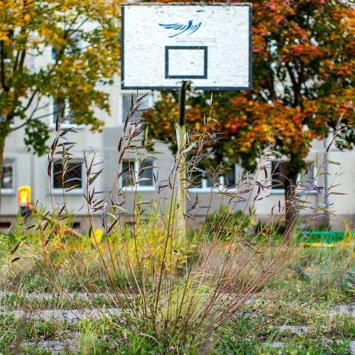 Apleistos krepšinio aikštelės Šiaurės prospekte  © Evaldo Šemioto nuotr.