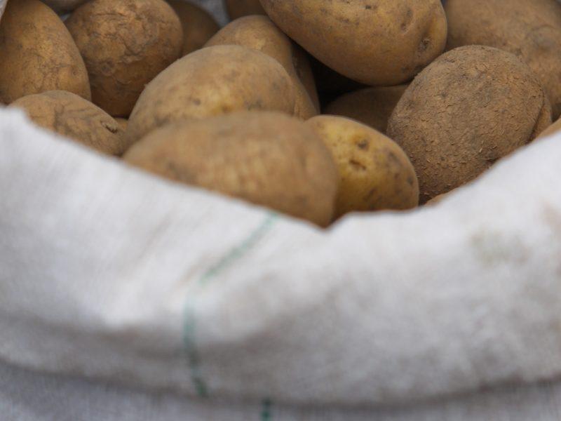 Baigiantis žiemai itin atidžiai maistui ruoškite bulves