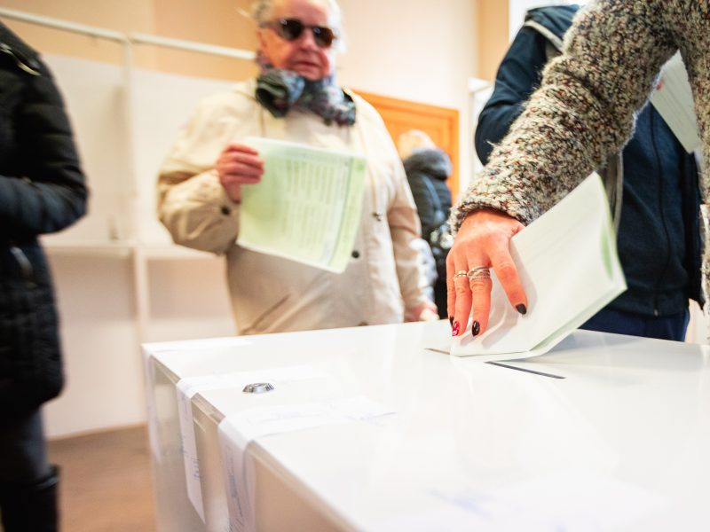 Politologai: dėl merų rinkimų įteisinimo bus sunku sutelkti politinę valią