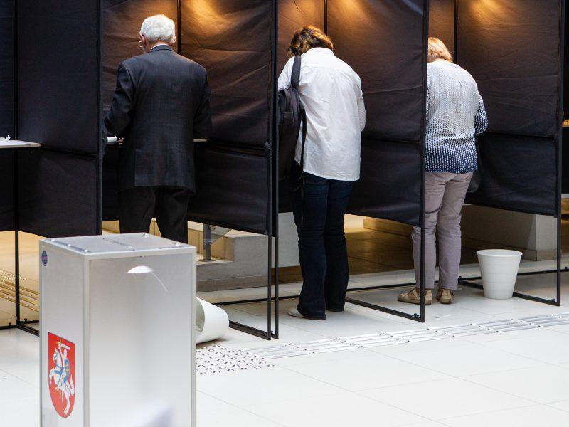 Prasidėjo išankstinis balsavimas savivaldybėse