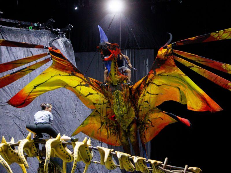 """""""Cirque du Soleil"""" pasirodymo užkulisiai"""