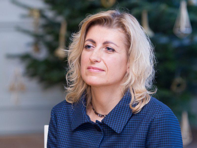 Kultūros ministrė: tikiu, kad strategija nebus užrakinta stalčiuje