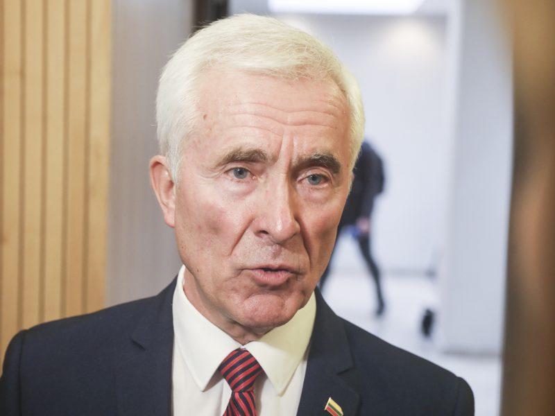 D. Kepenis: ačiū Dievui, Seimas neprarado sveiko proto