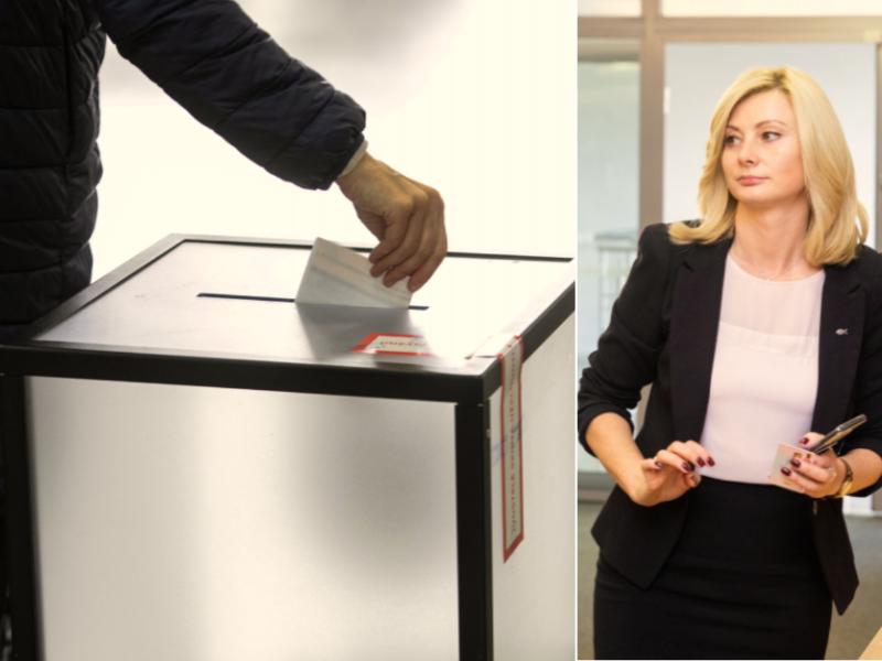 Lietuvos lenkų rinkimų akcija siūlo nuleisti Seimo rinkimų kartelę