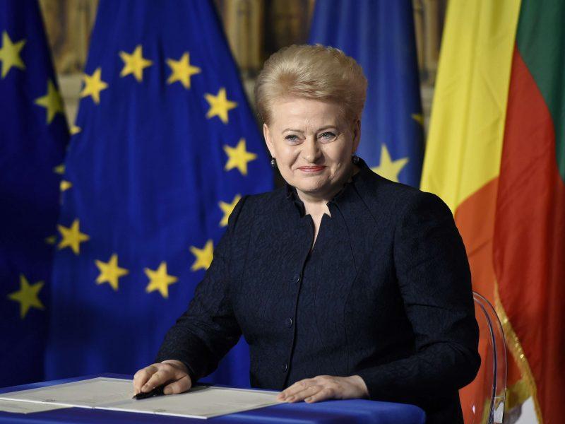 Kur galėtų pasukti D. Grybauskaitė, baigusi prezidentauti?