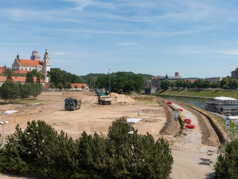 Baltoji Vilniaus paplūdimio tinklinio dėmė
