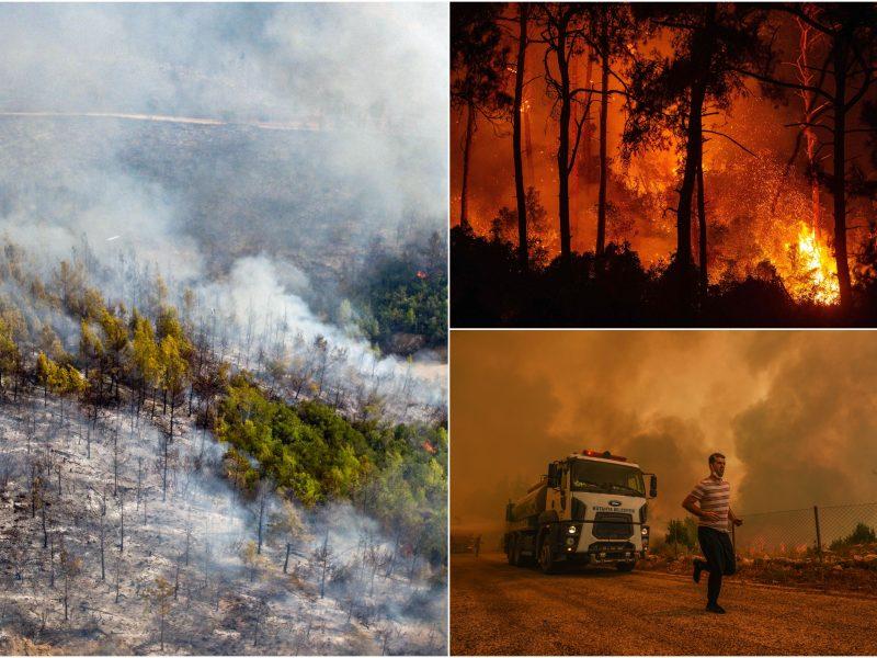 ES nusiuntė pagalbą su miškų gaisrais besigrumiančiai Turkijai