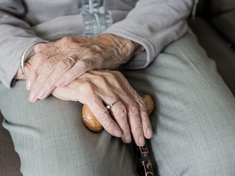 Tarnybos surado Kauno rajone dingusią senjorę: buvo tolokai nuklydusi