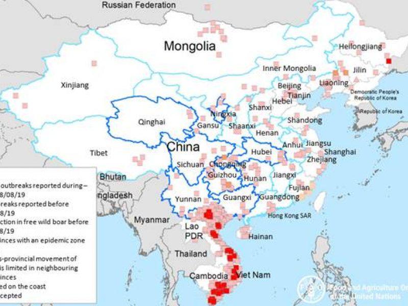 AKM neapleidžia Europos ir Azijos